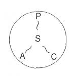 Sの概念 concept of self